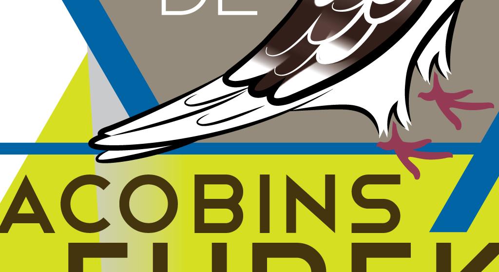 <p>Identité visuelle pour club d&rsquo;élevage et d&rsquo;exposition de pigeons Jacobins</p>